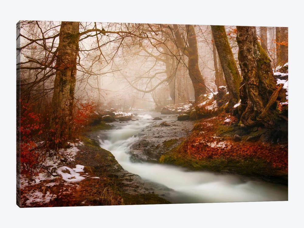 The Morning Walk by Adrian Borda 1-piece Canvas Print