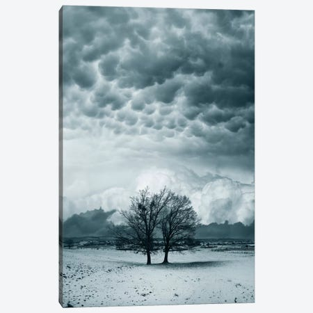 You And I Canvas Print #BOR69} by Adrian Borda Art Print
