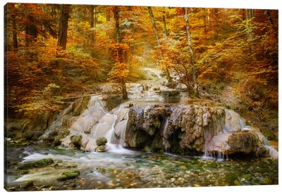 Autumn Mood Canvas Art Print