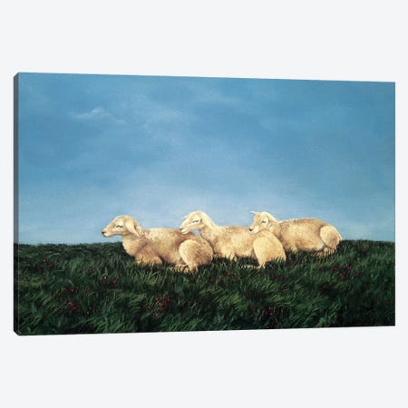 Counting Sheep Canvas Print #BOT14} by Sandra Bottinelli Canvas Print