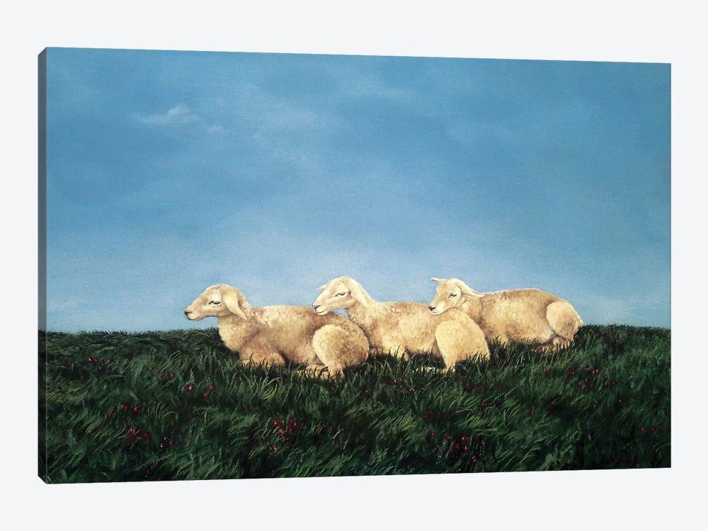 Counting Sheep by Sandra Bottinelli 1-piece Canvas Wall Art