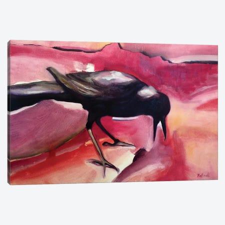 CrowI Canvas Print #BOT17} by Sandra Bottinelli Canvas Print