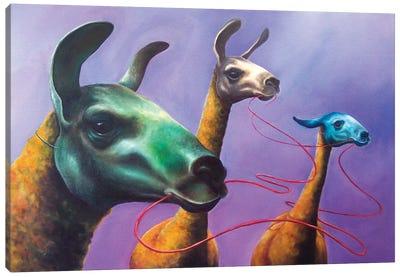 Lifeline Canvas Art Print