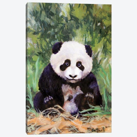 Panda Cub Canvas Print #BOT30} by Sandra Bottinelli Canvas Art