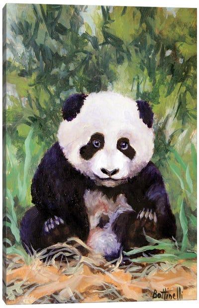 Panda Cub Canvas Art Print