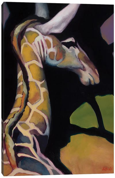 Portrait Of A Giraffe Canvas Art Print