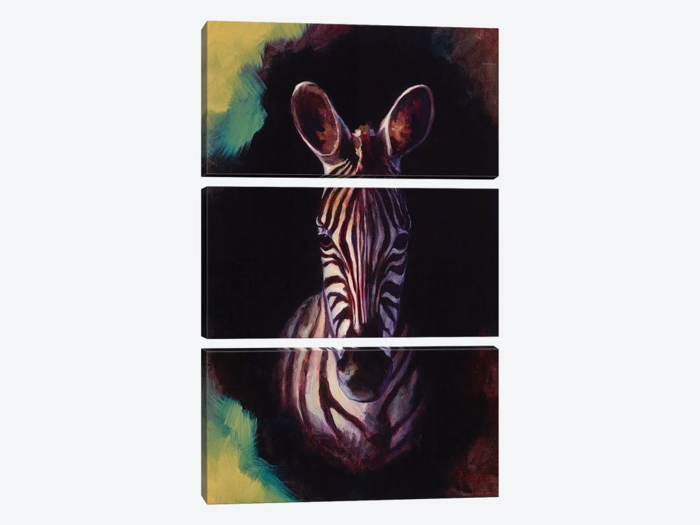 Portrait Of A Zebra by Sandra Bottinelli 3-piece Canvas Art Print