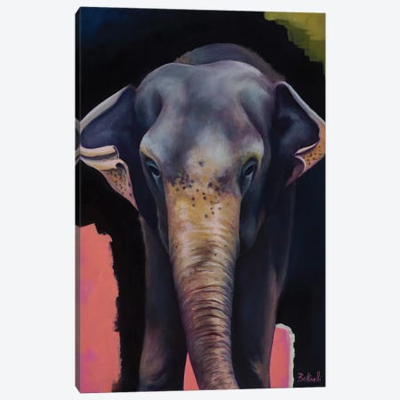 Portrait Of An Elephant Canvas Print #BOT34} by Sandra Bottinelli Canvas Print