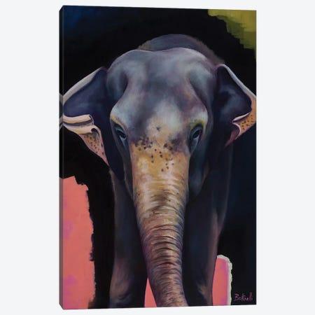 Portrait Of An Elephant Canvas Print #BOT34} by Sandra Bottinelli Canvas Print