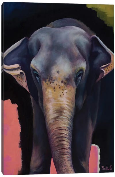Portrait Of An Elephant Canvas Art Print