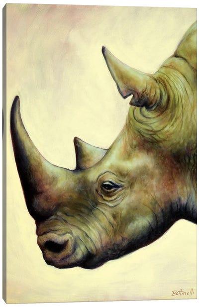 The Rhino Canvas Art Print