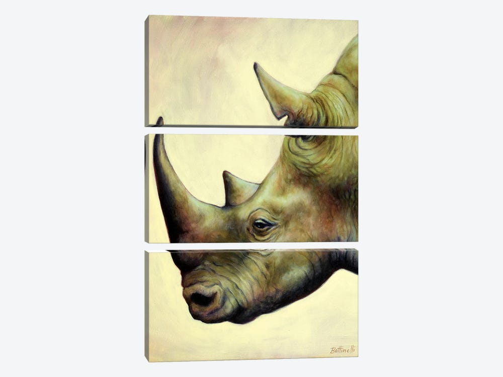 The Rhino by Sandra Bottinelli 3-piece Canvas Art