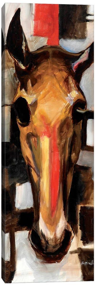 Racehorse Canvas Art Print