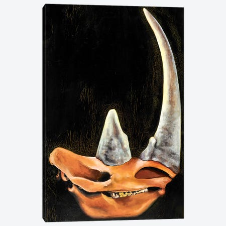 Rhino Skull Canvas Print #BOT69} by Sandra Bottinelli Canvas Print