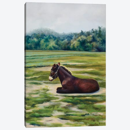 Captain Canvas Print #BOT8} by Sandra Bottinelli Canvas Wall Art