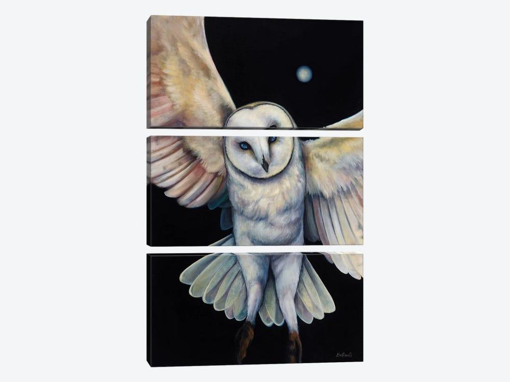 Ceres by Sandra Bottinelli 3-piece Canvas Artwork