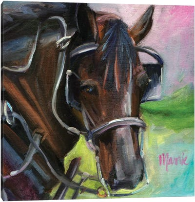 Charleston Working Horse Canvas Art Print