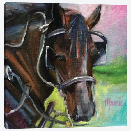 Charleston Working Horse Canvas Print #BOU14} by Marnie Bourque Canvas Artwork