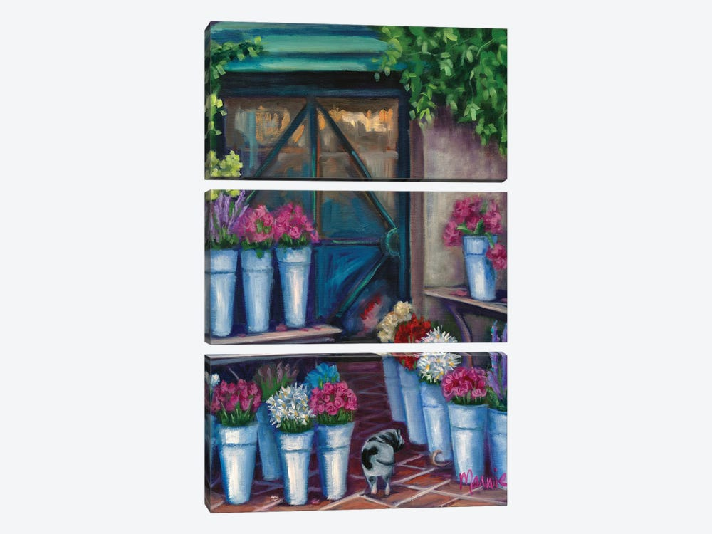 Daisy Flower Shopping by Marnie Bourque 3-piece Canvas Artwork