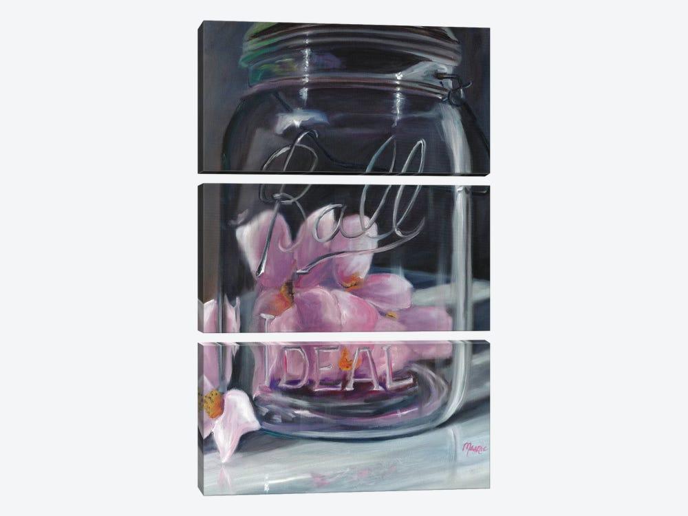 Jar Of Spring by Marnie Bourque 3-piece Canvas Art Print