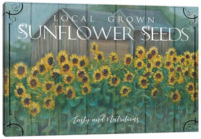 Sunflower Seeds Canvas Art Print