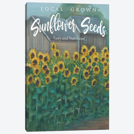 Sunflowers Canvas Print #BOU85} by Marnie Bourque Art Print