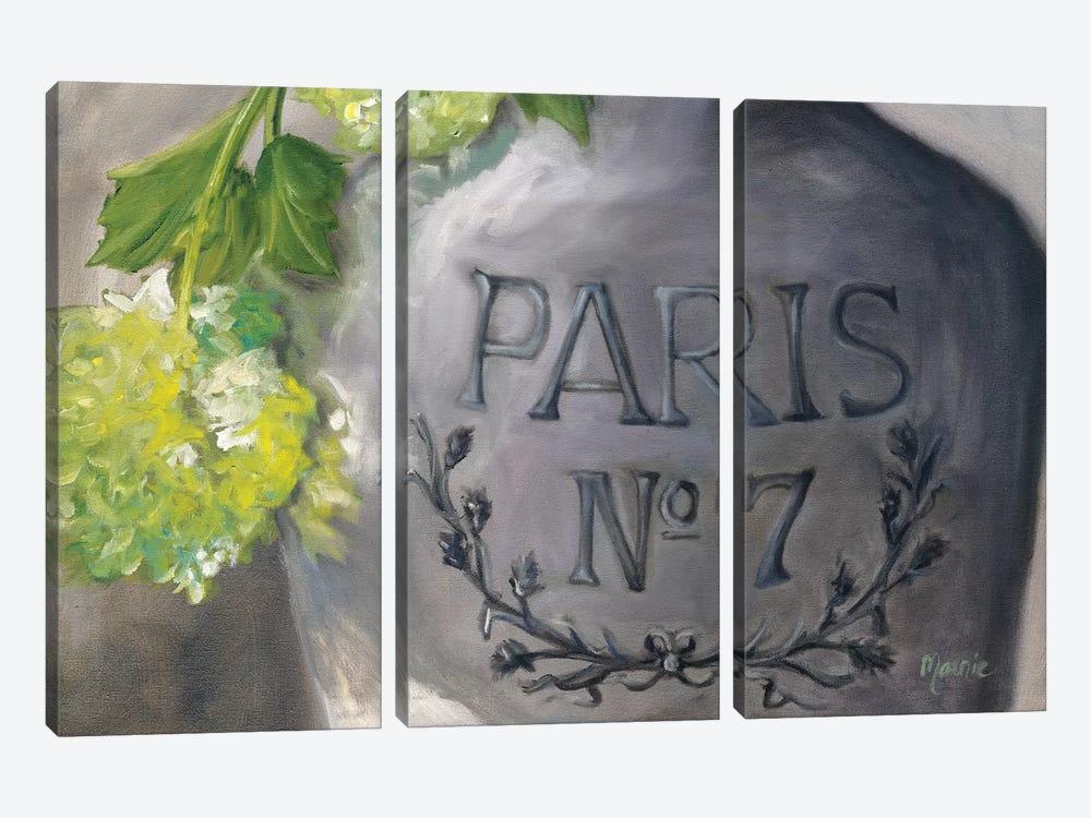 Vase Paris by Marnie Bourque 3-piece Canvas Print