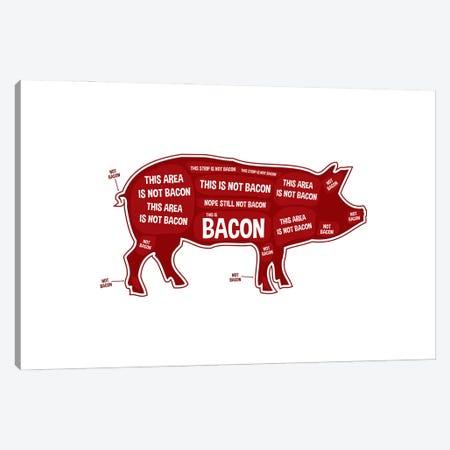 Not Bacon - Pig Canvas Print #BPP106} by Benton Park Prints Canvas Art Print