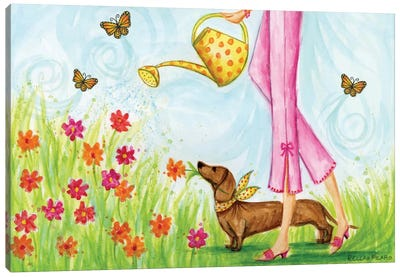 Sprung Garden Dog Canvas Art Print