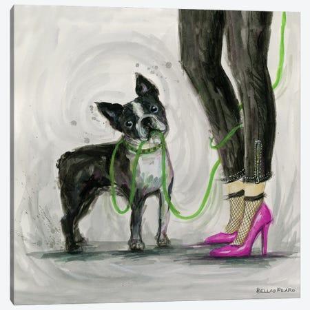 Mr Peeper's Leash Canvas Print #BPR360} by Bella Pilar Canvas Print