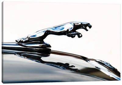 Jaguar hood ornament Canvas Art Print