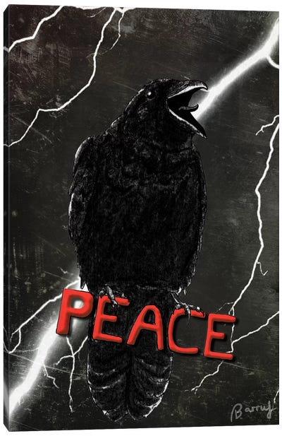 Crow For Peace Canvas Art Print