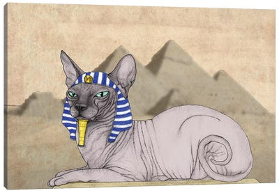Sphynx Cat With The Pyramids Of Giza Canvas Art Print