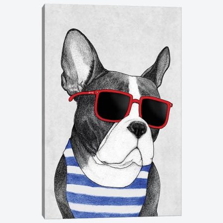 Frenchie - Summer Style Canvas Print #BRF19} by Barruf Canvas Art