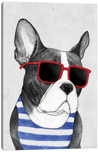 Frenchie - Summer Style Canvas Art Print