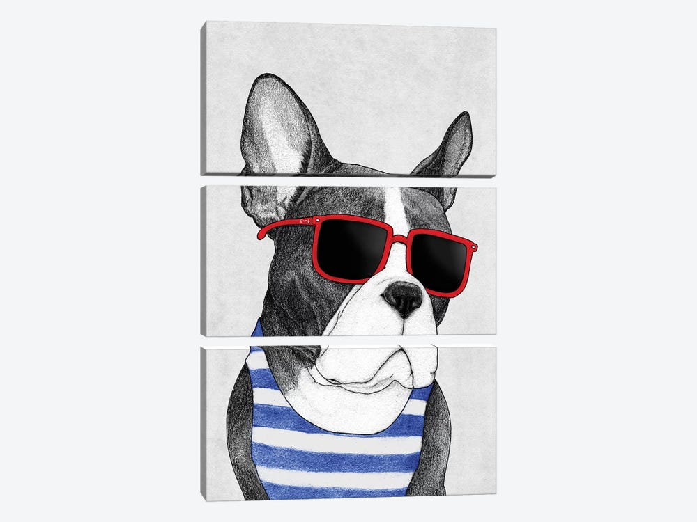 Frenchie - Summer Style by Barruf 3-piece Canvas Art