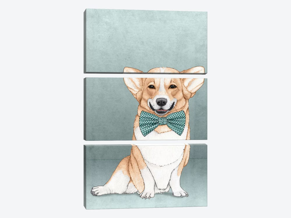 Corgi Dog by Barruf 3-piece Canvas Wall Art