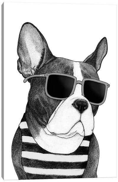 Frenchie - Summer Style In B&W Canvas Art Print
