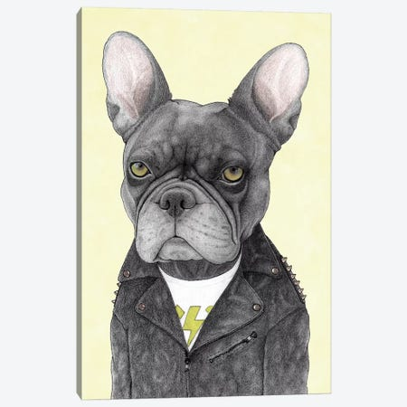 Hard Rock French Bulldog Canvas Print #BRF30} by Barruf Canvas Artwork