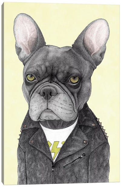 Hard Rock French Bulldog Canvas Art Print