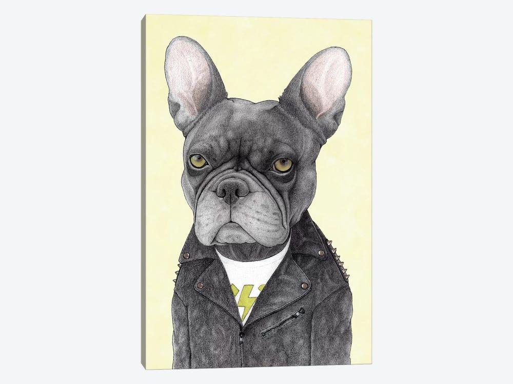Hard Rock French Bulldog by Barruf 1-piece Canvas Print