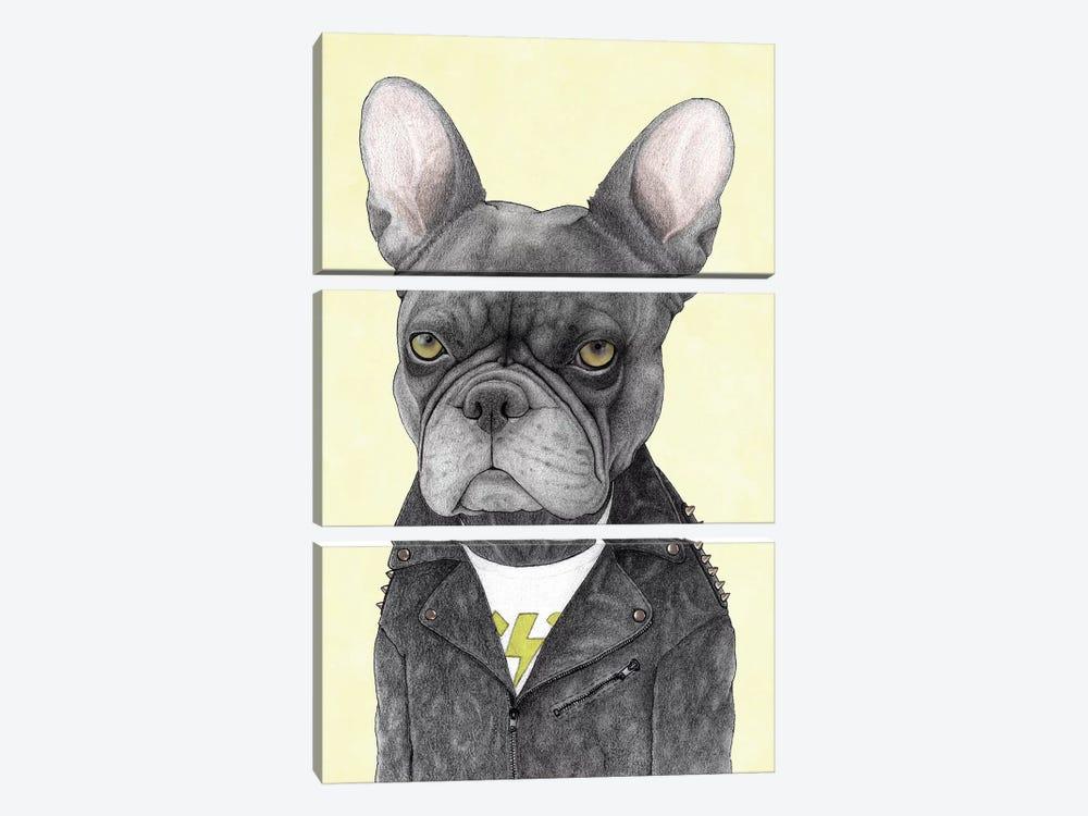 Hard Rock French Bulldog by Barruf 3-piece Canvas Art Print