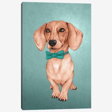 The Wiener Dog Canvas Print #BRF3} by Barruf Canvas Art