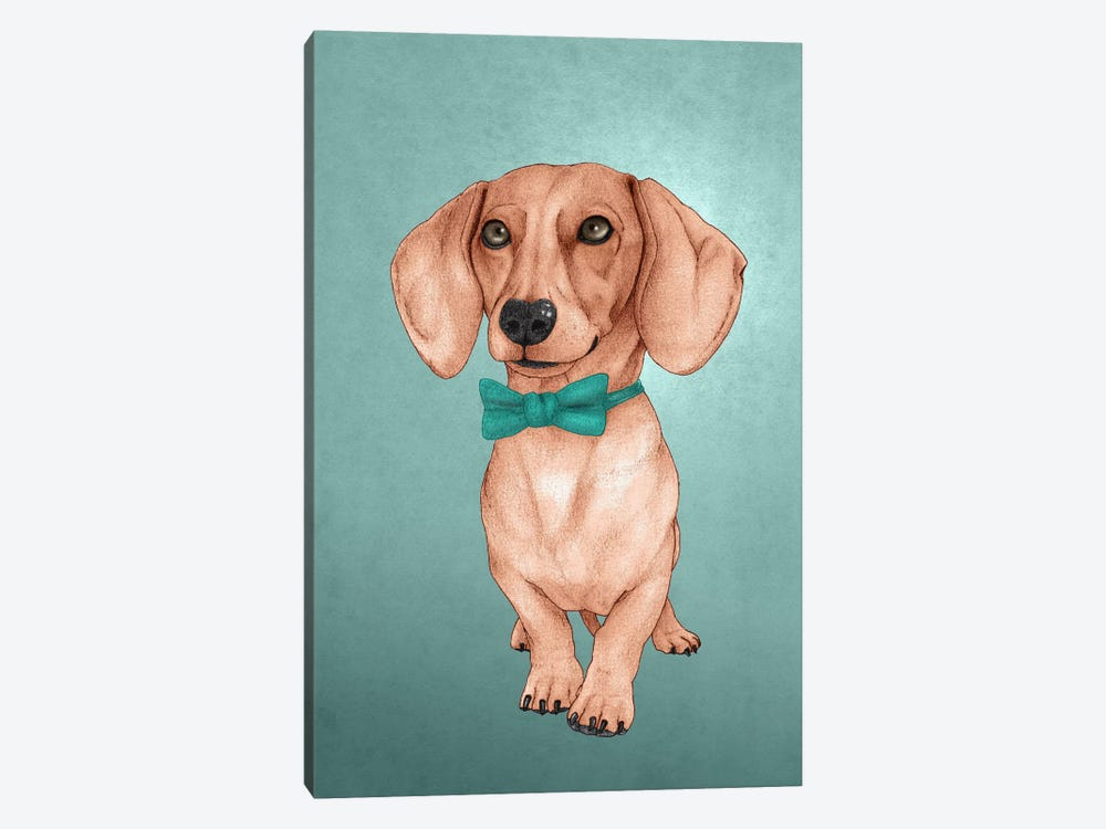 The Wiener Dog 1-piece Canvas Wall Art