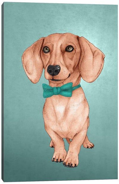 The Wiener Dog Canvas Art Print