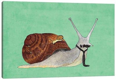 Mr. Snail Canvas Art Print