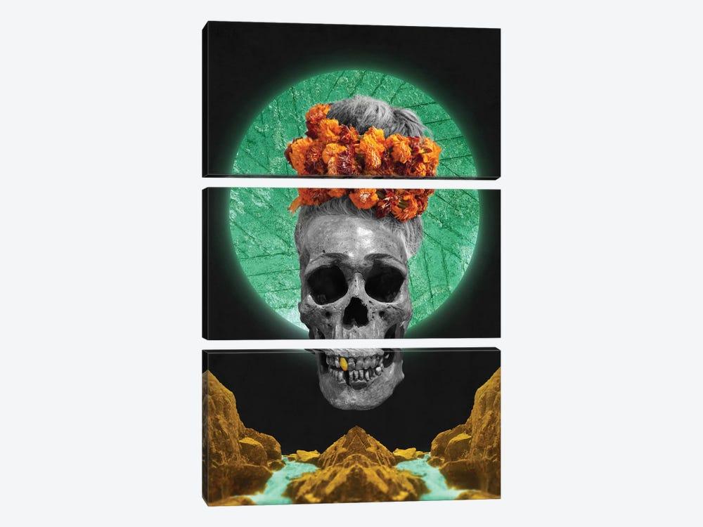 Skull Espiritual by Barruf 3-piece Canvas Art