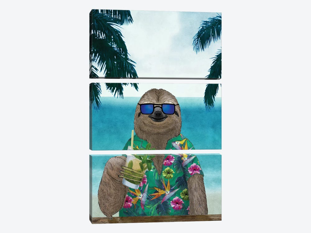Summer Sloth by Barruf 3-piece Canvas Art