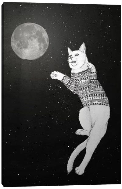 Cat Trying To Catch The Moon Canvas Art Print