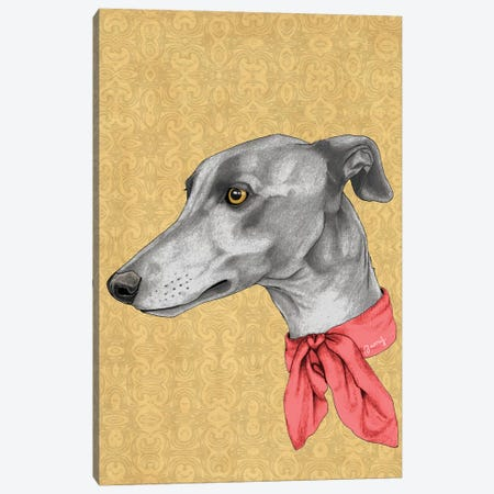 Greyhound With Scarf Canvas Print #BRF81} by Barruf Canvas Art Print
